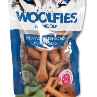 Koirien hampaidenhoito